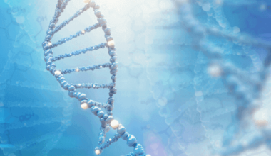 genotipo e fenotipo